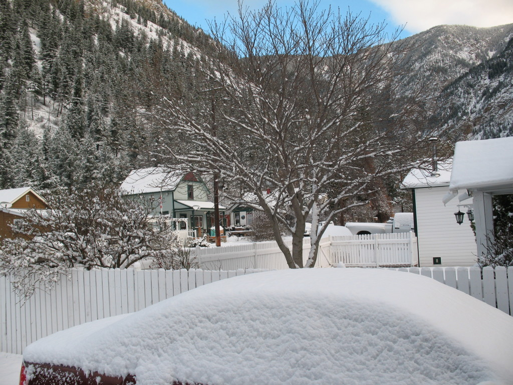 Winter view from our front deck, after last night's snowfall.