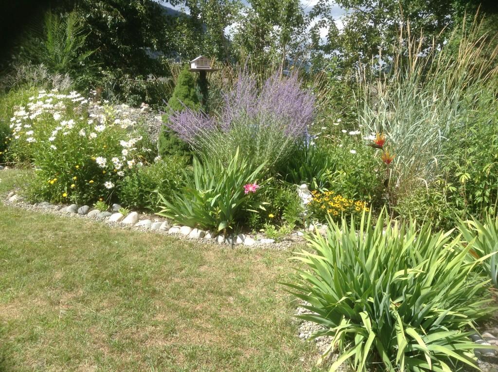 Ingrid Percival garden