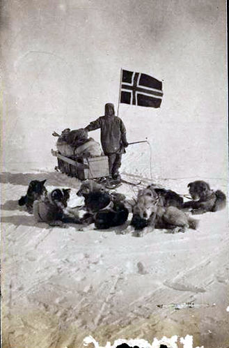 Roald Amundsen & his dog team at the South Pole (coolantarctica.com)
